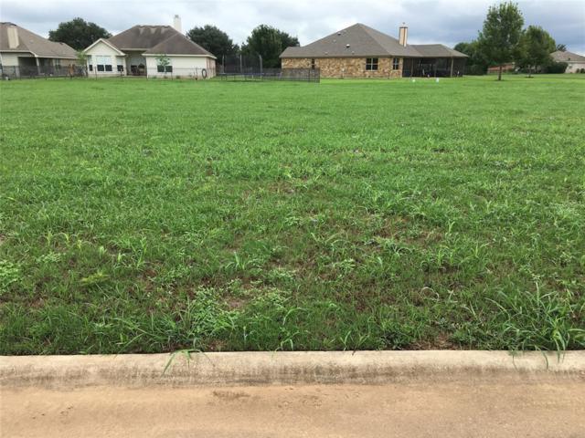 107 Egret Drive, Bastrop, TX 78602 (MLS #22636445) :: Texas Home Shop Realty