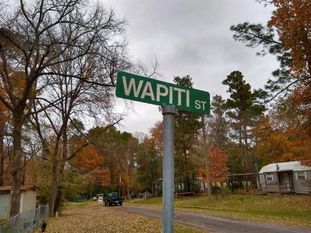 00 Wapiti Street, Onalaska, TX 77360 (MLS #22646235) :: Texas Home Shop Realty