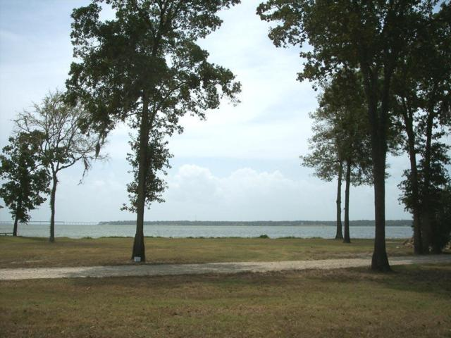 Lot 87 Bridgewater, Onalaska, TX 77360 (MLS #22664426) :: Giorgi Real Estate Group