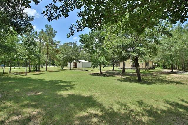 25311 Lady Ellen Drive, Hockley, TX 77447 (MLS #22741112) :: The SOLD by George Team