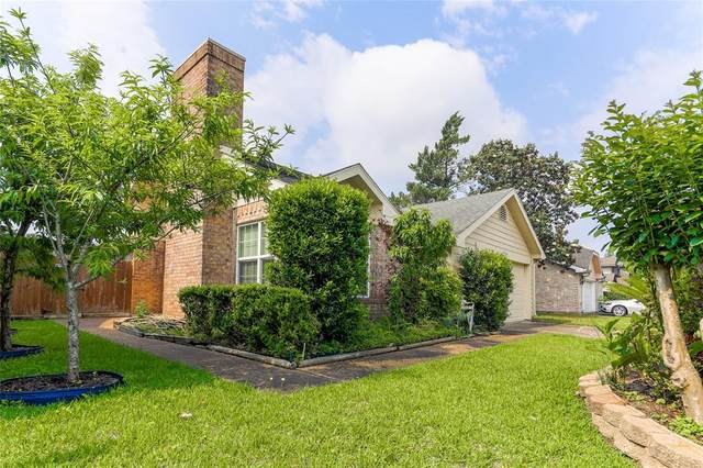 12719 Skyknoll Lane, Houston, TX 77082 (MLS #22811734) :: Michele Harmon Team
