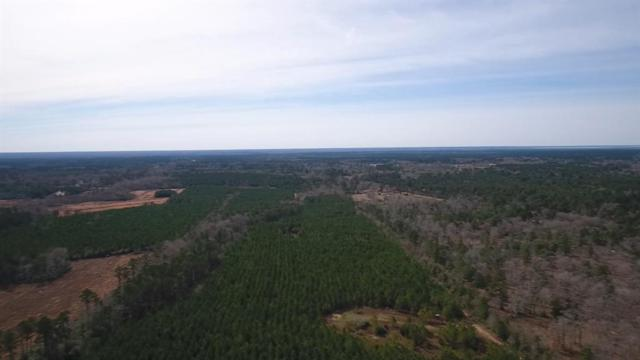 TBD Bird Road, Goodrich, TX 77335 (MLS #22830355) :: Green Residential