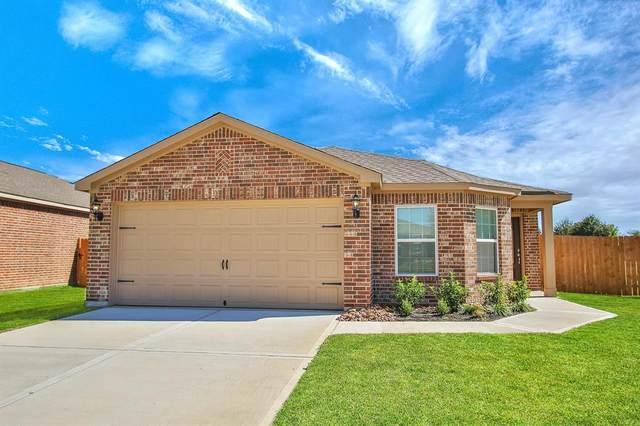22619 Steel Blue Jaybird Drive, Hockley, TX 77447 (MLS #22894385) :: CORE Realty