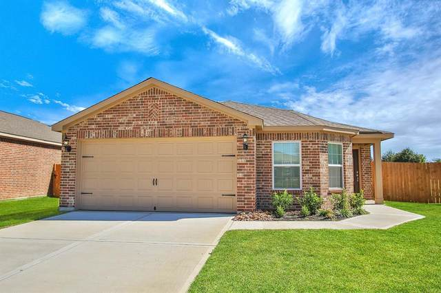 22619 Steel Blue Jaybird Drive, Hockley, TX 77447 (MLS #22894385) :: The Sansone Group