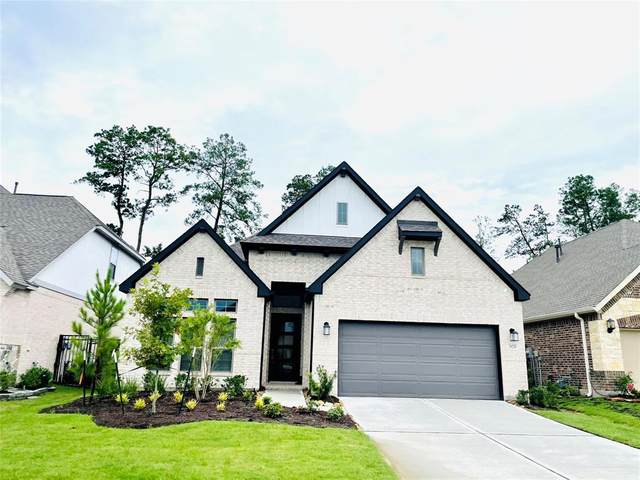28250 Wooded Mist Drive, The Woodlands, TX 77386 (MLS #22900596) :: NewHomePrograms.com