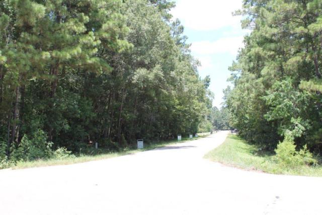 Lot 34 Westwood Square W, Magnolia, TX 77354 (MLS #22988838) :: The SOLD by George Team