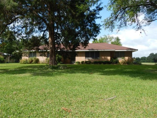 219 S 1st Street, Beasley, TX 77417 (MLS #23018282) :: The Heyl Group at Keller Williams