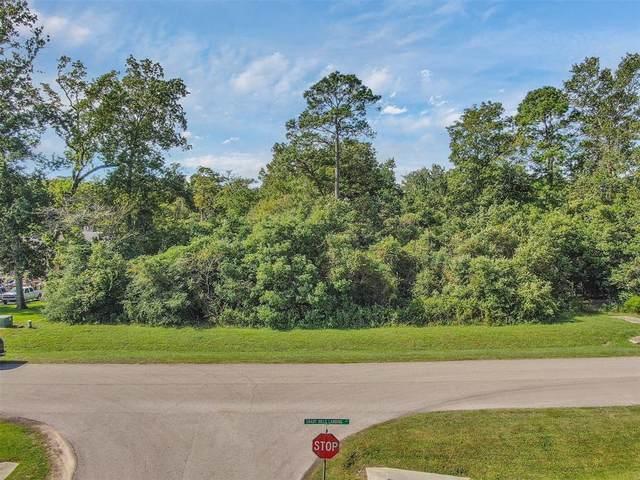 27350 Shady Hills Landing Lane, Spring, TX 77386 (MLS #23045710) :: Parodi Group Real Estate