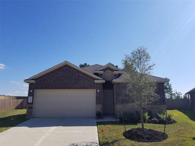 11303 Dawn Beach, Conroe, TX 77304 (MLS #23054913) :: The Home Branch
