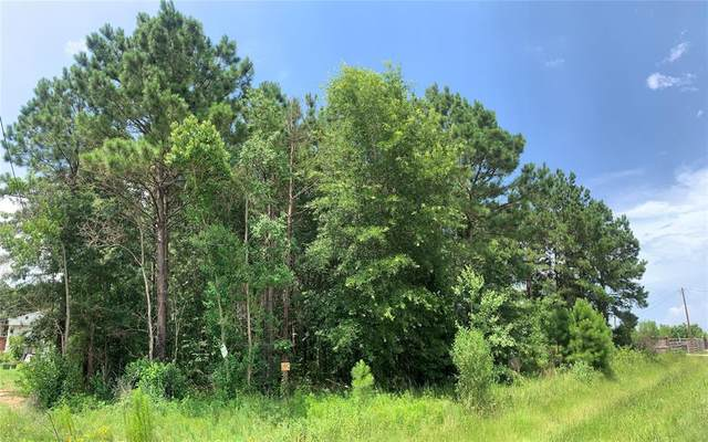 LOT 695 1487 County Road 3545, Cleveland, TX 77327 (MLS #23257054) :: My BCS Home Real Estate Group