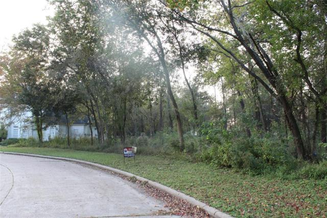 17306 Cedar Placid Ln, Houston, TX 77068 (MLS #23281919) :: Texas Home Shop Realty