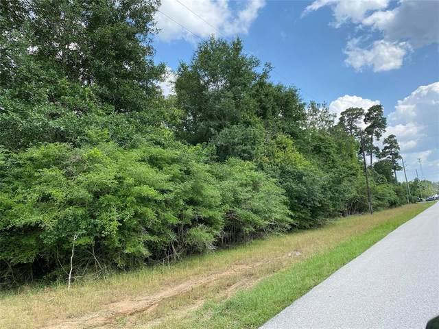 33000 Wedgewood Drive, Magnolia, TX 77354 (MLS #23345105) :: Ellison Real Estate Team