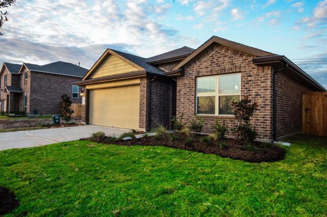 2121 Paradise Point, Texas City, TX 77591 (MLS #23392490) :: Texas Home Shop Realty