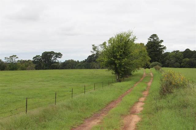 000 Fm 3016, Grapeland, TX 75844 (MLS #23421000) :: The SOLD by George Team
