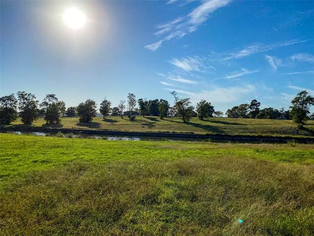 166 Waterfront Dr Drive, Livingston, TX 77351 (MLS #23508414) :: Connell Team with Better Homes and Gardens, Gary Greene
