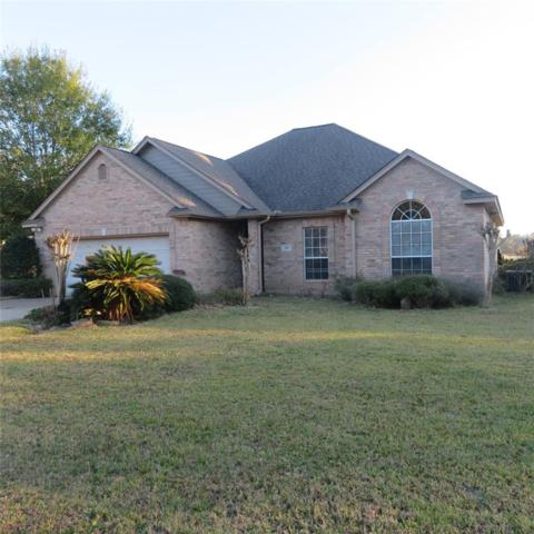 203 N Peppertree Drive, Village Mills, TX 77663 (MLS #23520128) :: REMAX Space Center - The Bly Team