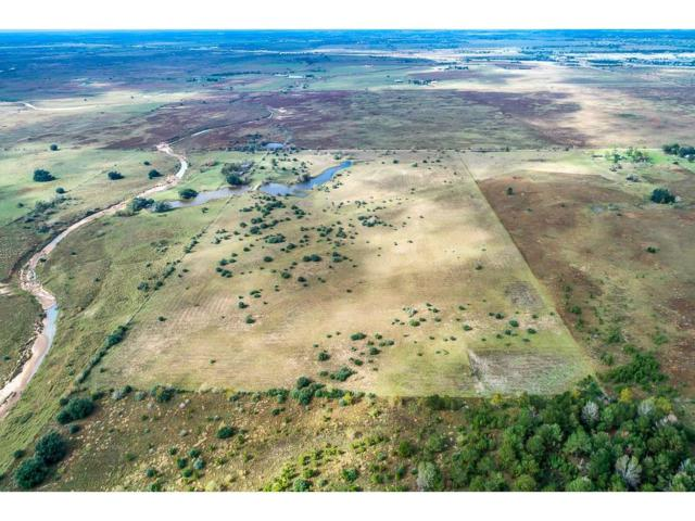 2411 Mound Road, Sealy, TX 77474 (MLS #23528460) :: See Tim Sell