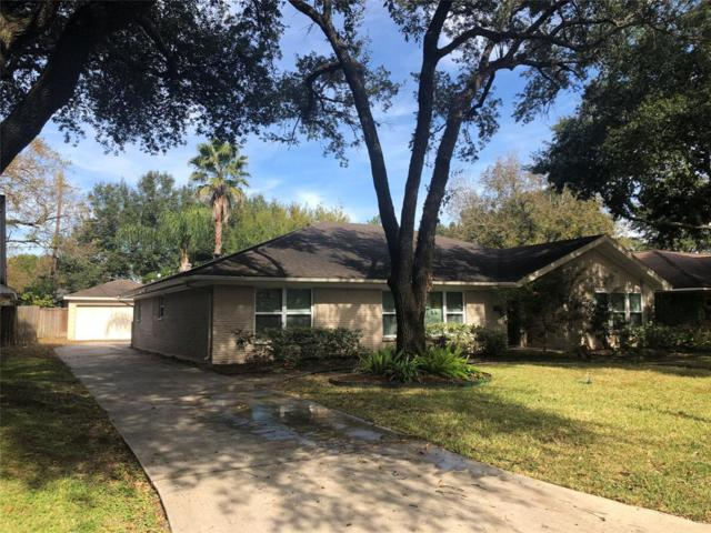 4414 Firestone Drive, Houston, TX 77035 (MLS #23696893) :: Magnolia Realty