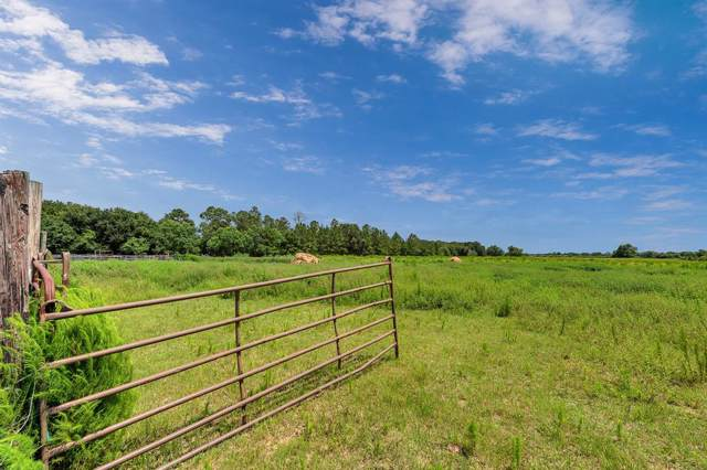 29720 Castle Road, Waller, TX 77484 (MLS #23704652) :: CORE Realty