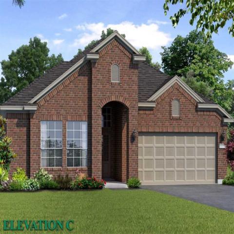 19618 Haven Cliff Lane, Spring, TX 77388 (MLS #23717539) :: Texas Home Shop Realty