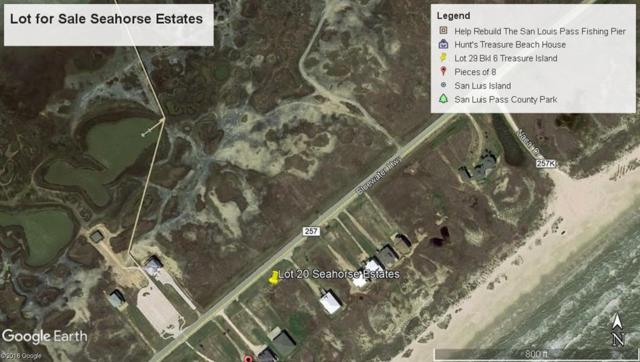5250 Bluewater Hwy County Road, Freeport, TX 77542 (MLS #23808967) :: The SOLD by George Team