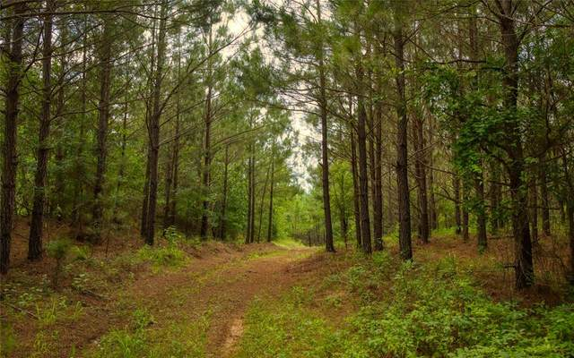 00 Anderson County Road 335, Neches, TX 75779 (MLS #23812762) :: The SOLD by George Team