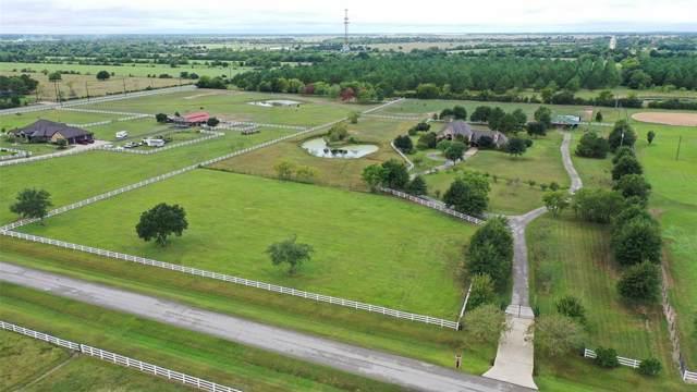 135 Hunters Creek Way, Hockley, TX 77447 (MLS #23830700) :: Texas Home Shop Realty
