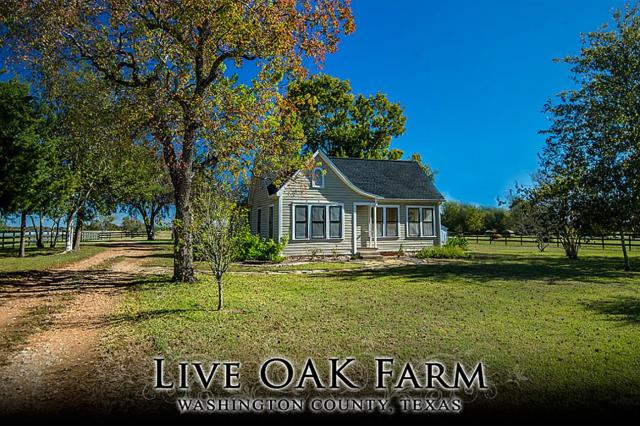 17152 Fm 1155 Live Oak, Washington, TX 77880 (MLS #23844284) :: JL Realty Team at Coldwell Banker, United