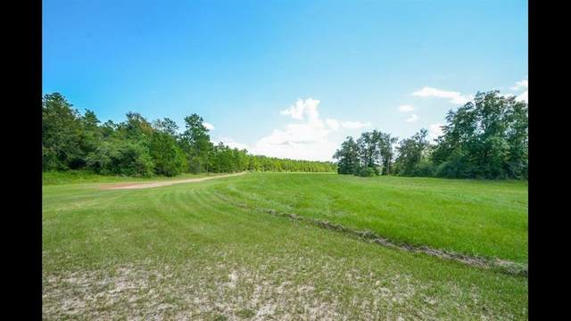 16185 E Williams Road, Conroe, TX 77303 (MLS #23889192) :: Texas Home Shop Realty