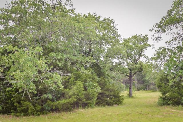 3351 W I 10 Frontage Road, Flatonia, TX 78941 (MLS #2403915) :: Texas Home Shop Realty