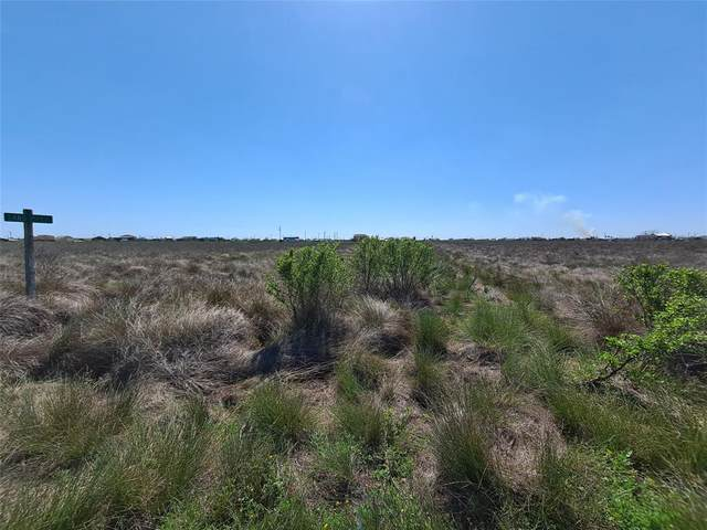 0 Sandpiper, Sargent, TX 77414 (MLS #24058426) :: My BCS Home Real Estate Group