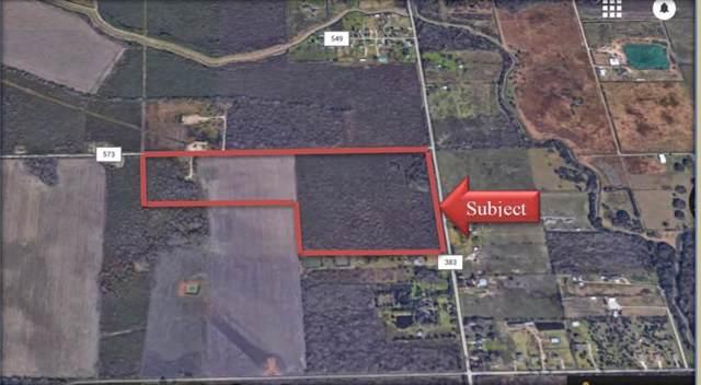 60 acres County Road 383, Rosharon, TX 77583 (MLS #2414434) :: NewHomePrograms.com LLC
