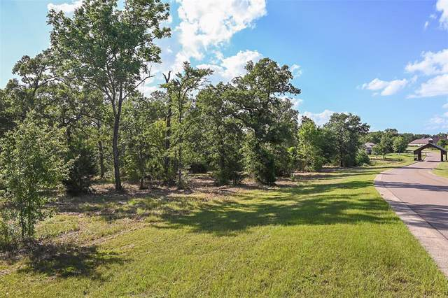 Lot 14 King Oaks Drive, Iola, TX 77861 (MLS #24157748) :: Caskey Realty