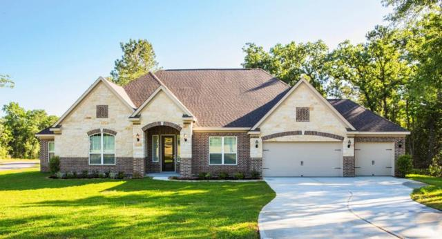 21406 Mason Court, Magnolia, TX 77354 (MLS #24175287) :: Krueger Real Estate