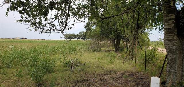 2275 County Road 115, Rogers, TX 76569 (#24203543) :: ORO Realty