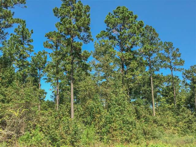 00 Felix Currie Rd, Point Blank, TX 77364 (MLS #24222576) :: The Freund Group
