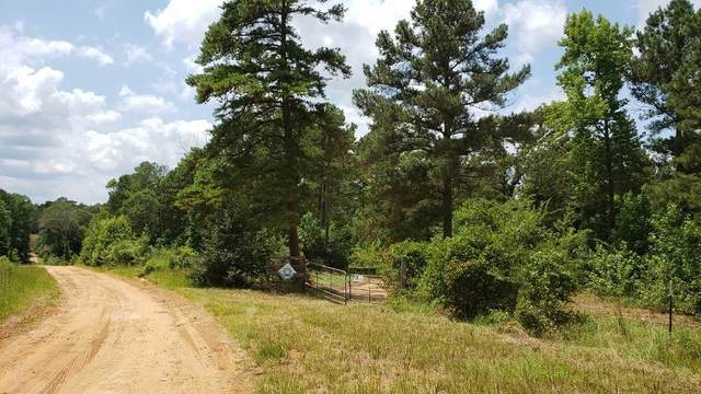 Tract 4 Private Road 7403, Brownsboro, TX 75756 (MLS #24234346) :: The SOLD by George Team