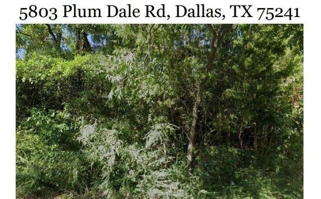 5803 Plum Dale Road, Dallas, TX 75241 (MLS #24285034) :: Christy Buck Team