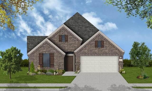 11438 Liger Drive, Tomball, TX 77375 (MLS #24323456) :: The Parodi Team at Realty Associates