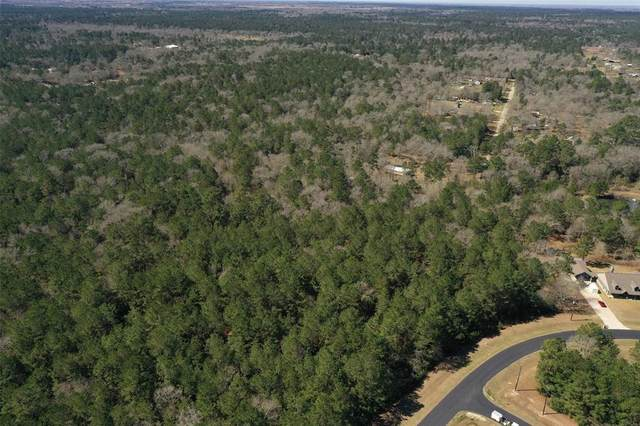 30083 Round Up Drive, Waller, TX 77484 (MLS #24444419) :: The SOLD by George Team
