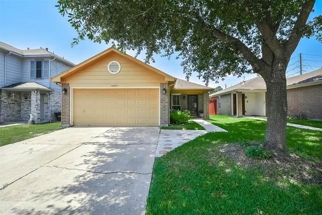 16611 N Mist Drive, Houston, TX 77073 (MLS #24475069) :: Lerner Realty Solutions