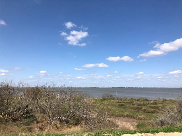 Lot 59 Fivemile Trail, Palacios, TX 77465 (MLS #24487191) :: Phyllis Foster Real Estate
