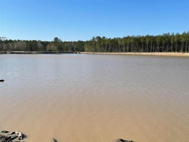118 Cr 3430, Lovelady, TX 75851 (MLS #24567803) :: Christy Buck Team