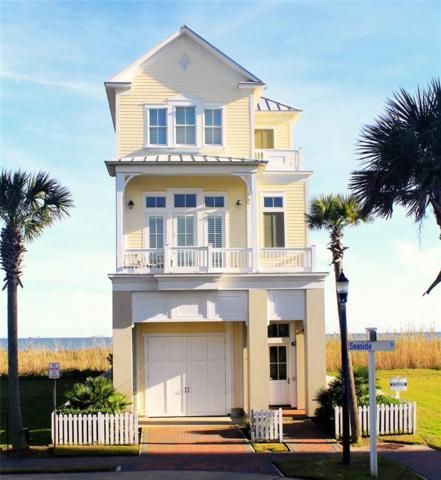 1525 Seaside Drive, Galveston, TX 77550 (MLS #24614215) :: Texas Home Shop Realty