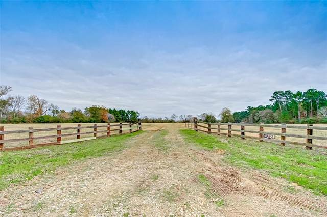 3255 Spring Branch Road, Montgomery, TX 77316 (MLS #24620297) :: The Bly Team