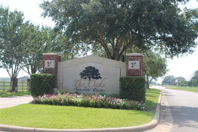 314 Hunter Court, Rosharon, TX 77583 (MLS #24672426) :: The Jill Smith Team