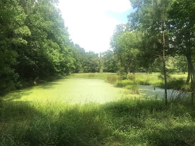 24761 Plantation Estates Circle, Porter, TX 77365 (MLS #24831128) :: Michele Harmon Team