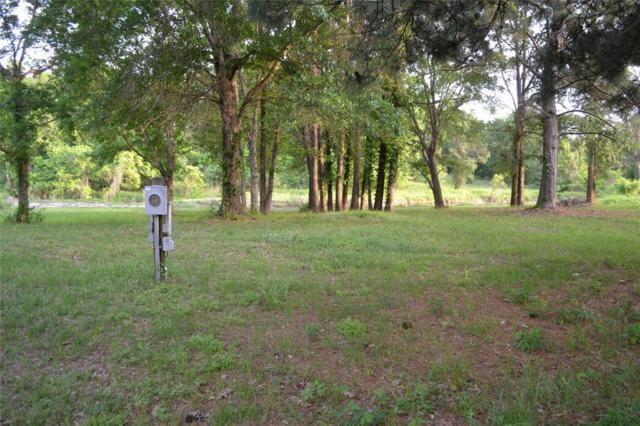 tbd Marina Drive, Coldspring, TX 77331 (MLS #25017574) :: The SOLD by George Team
