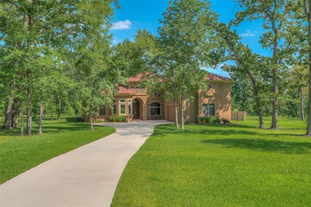 1574 Ruby Drive, Willis, TX 77378 (MLS #25059148) :: The SOLD by George Team