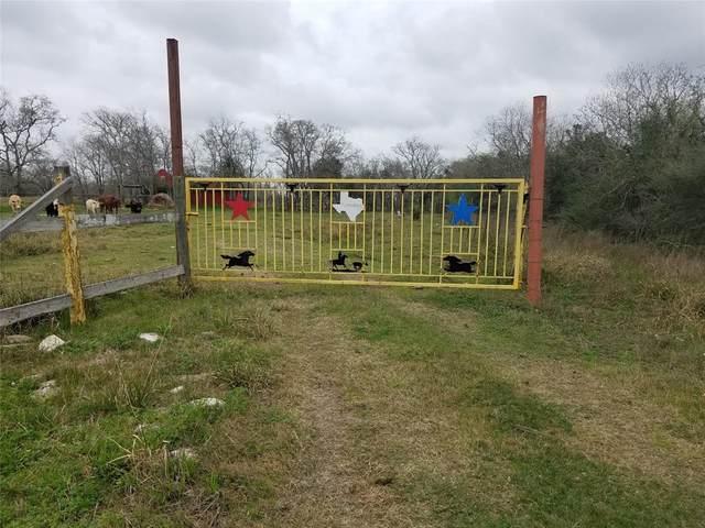 00 Brumbelow Road, Needville, TX 77461 (MLS #25147016) :: The SOLD by George Team
